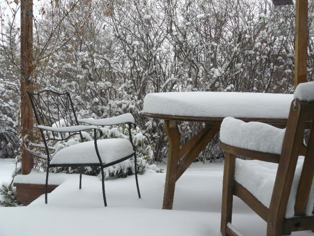 """the chairs have """"snow cushions!"""""""