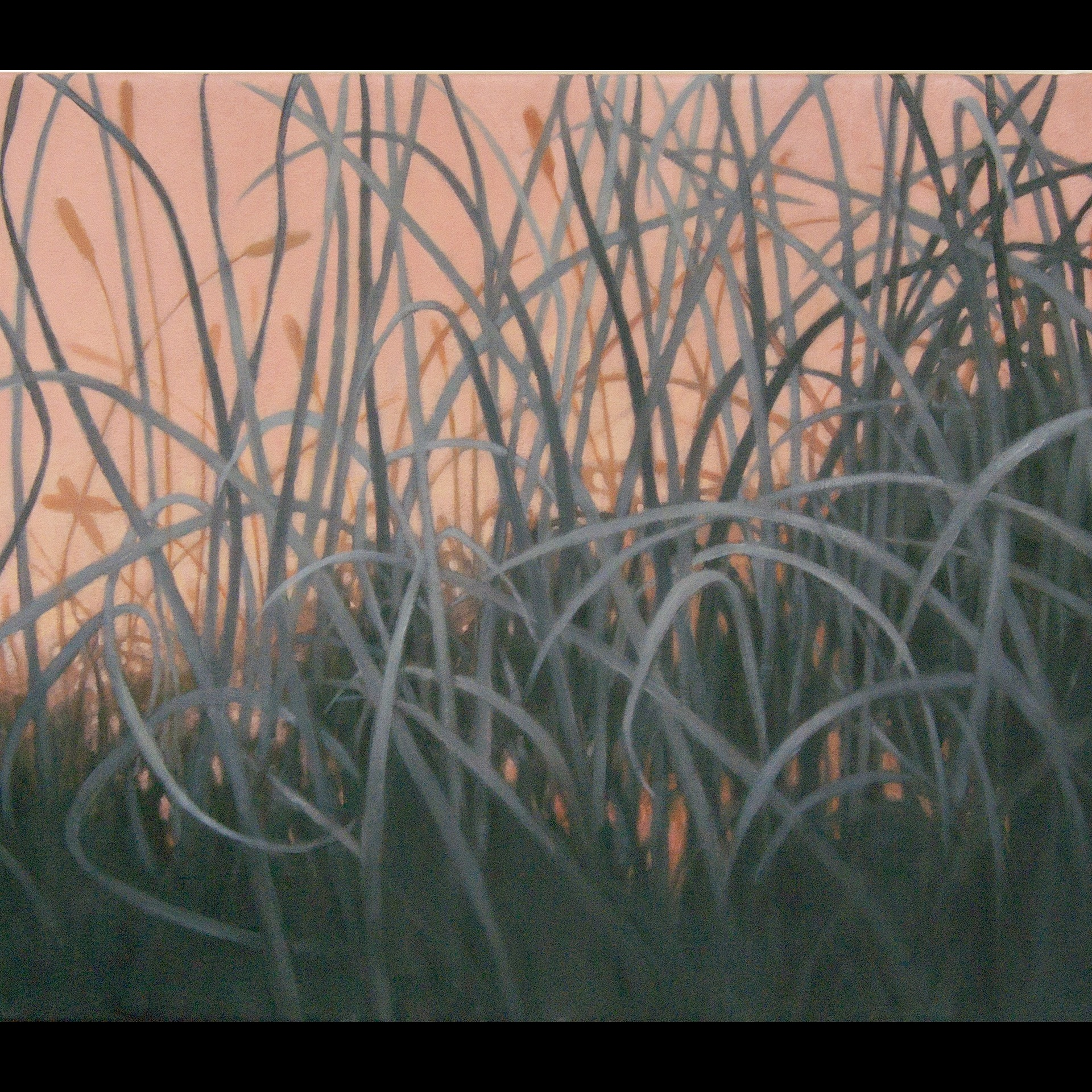 oil painting of grey grasses against pink background by Nanci Erskine