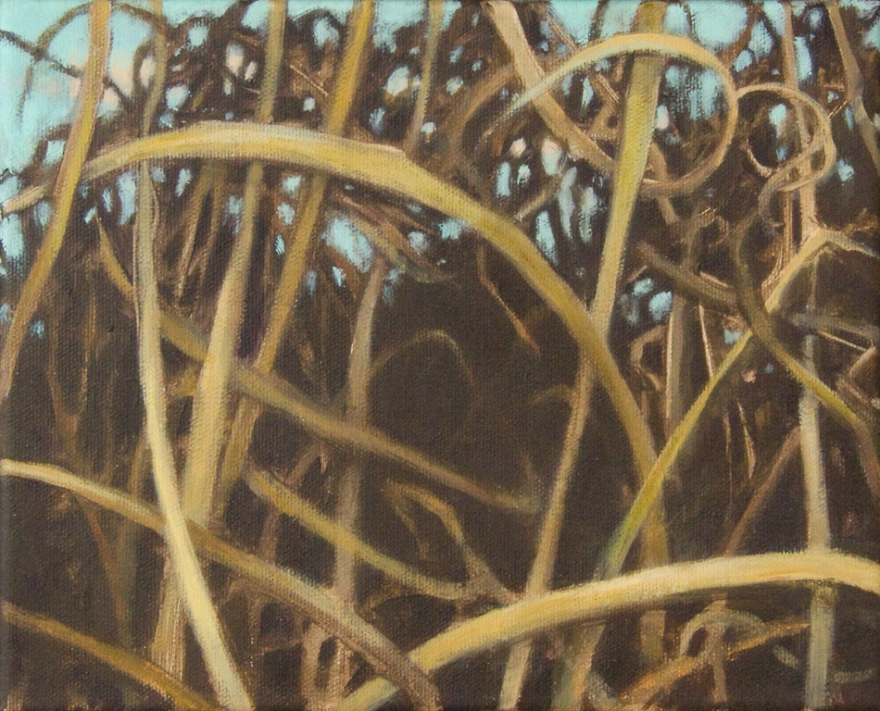 tangled grass oil painting in browns by Nanci Erskine