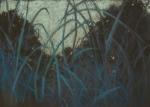 Grasslands Nocturne 4, 10x14, pastel, 2015
