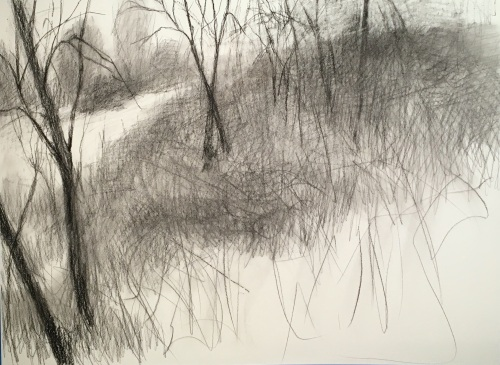 drawing of hillside in compressed charcoal by Nanci Erskine