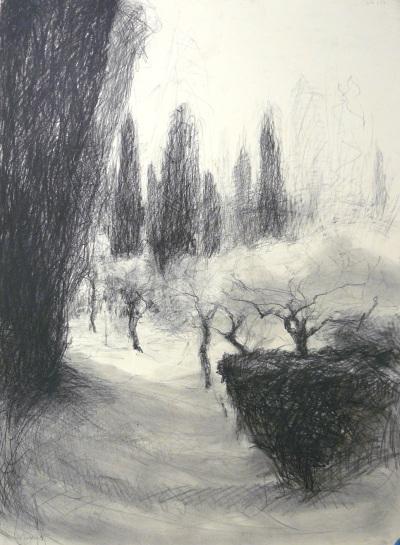 Olive Grove - charcoal