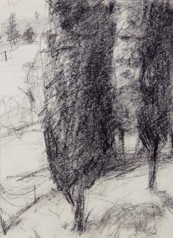 Sentinels - charcoal