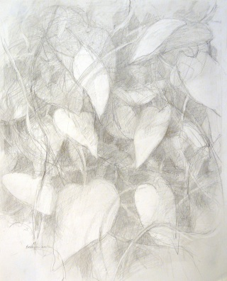 Vine Wall - graphite