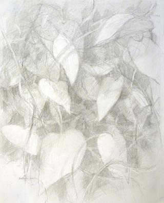 Vine Wall - graphite