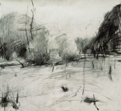 Kentucky Creek - charcoal