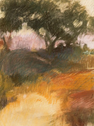 Afternoon Walk- pastel