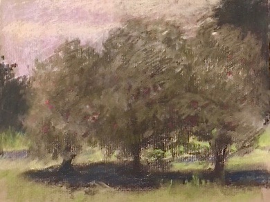 Apples Orchard - pastel