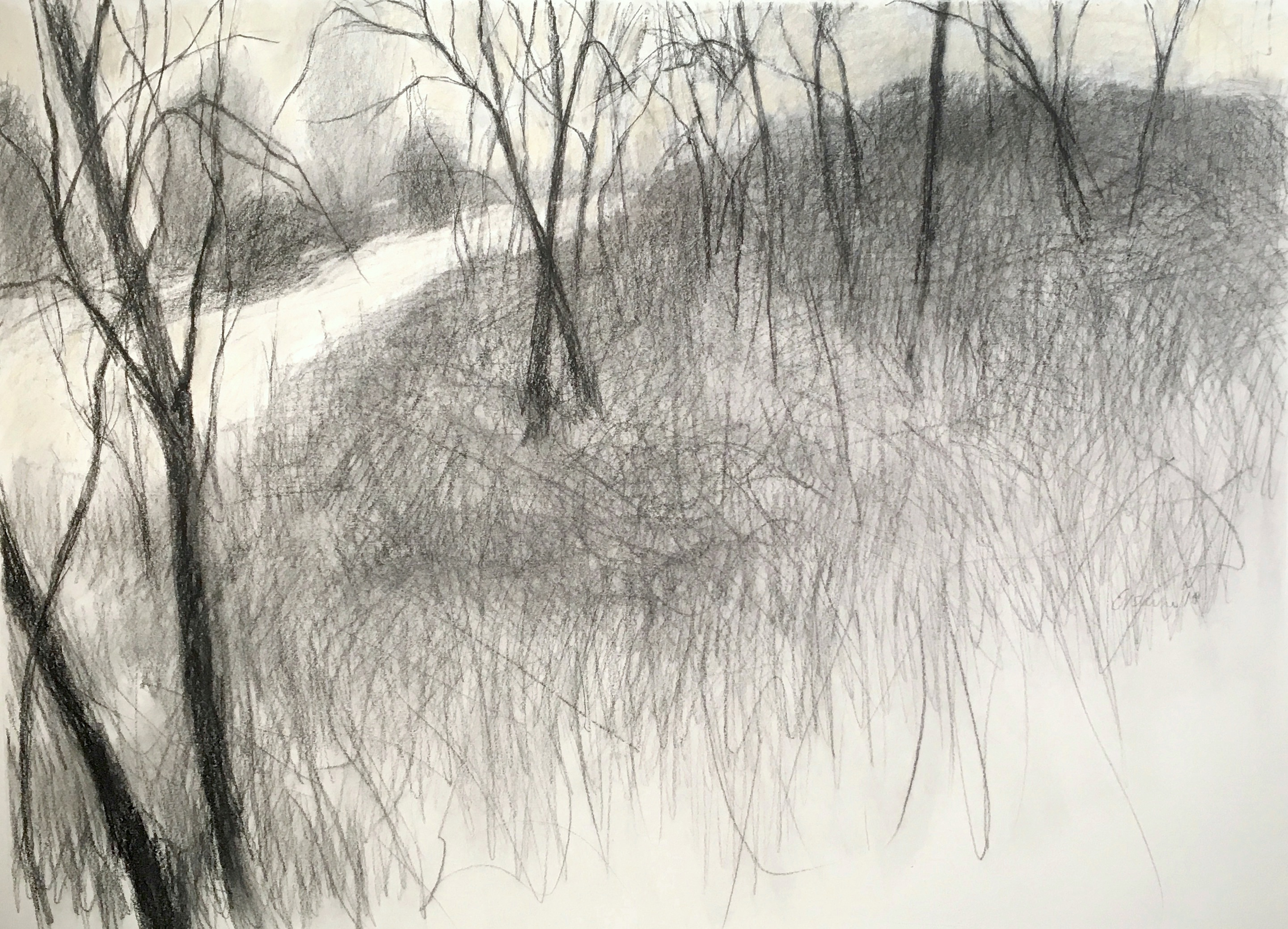 charcoal drawing of a hillside with trees and a pathway