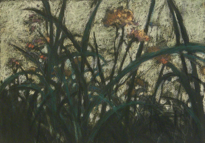 grasslands-pastel.-night-10x14-1