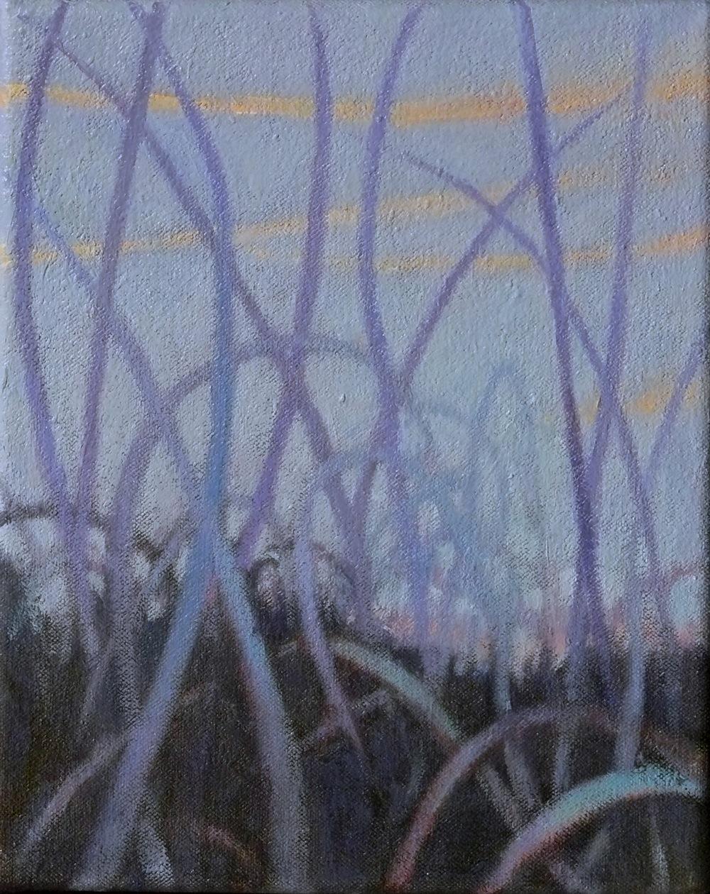 grasslands12