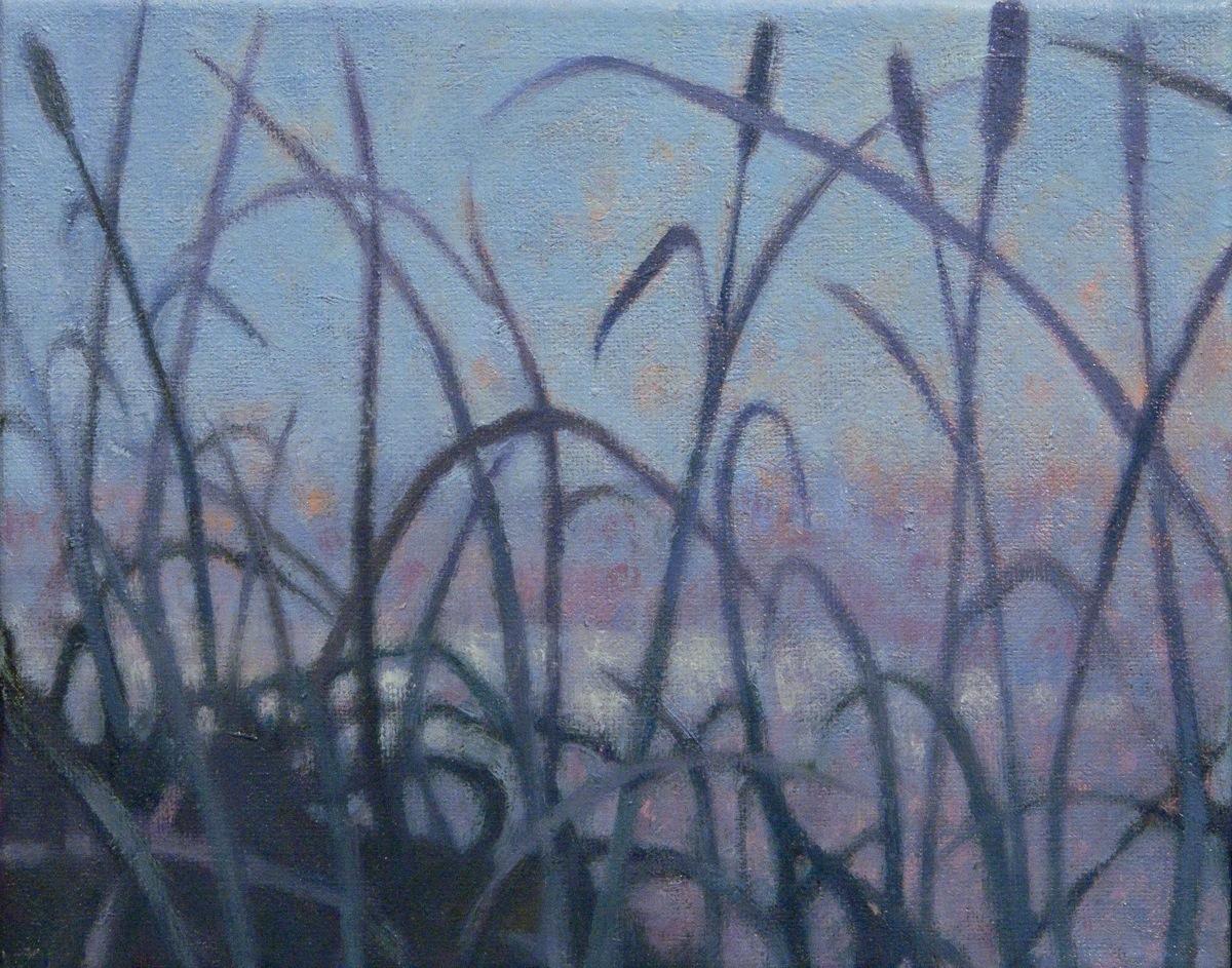 grasslands14