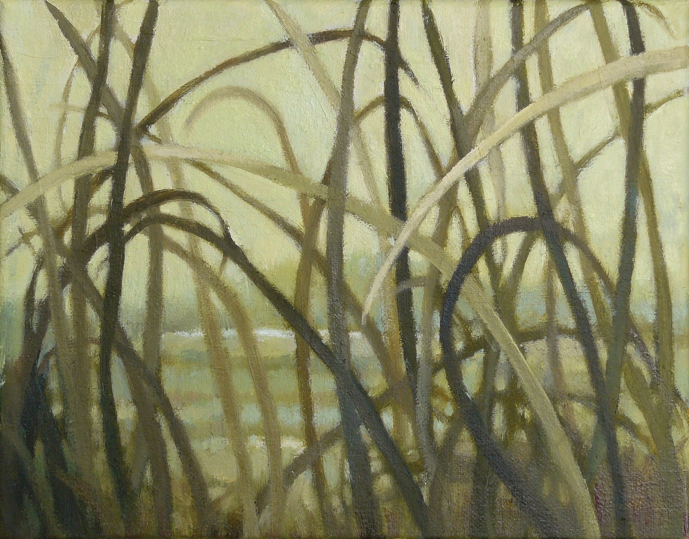 grasslands16