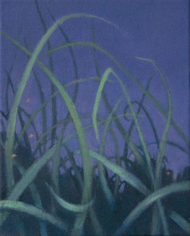 grasslands8