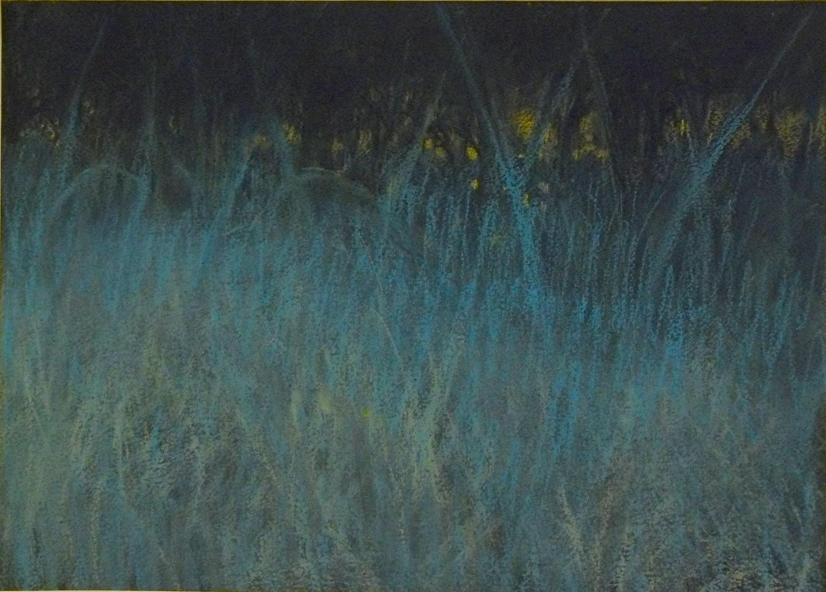 prairie-nocturne-10x14-pastel-2016